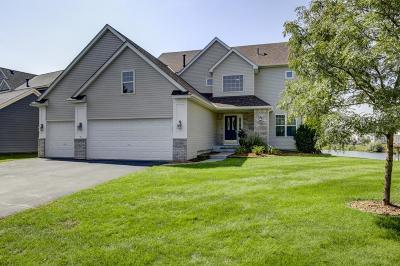 Blaine Single Family Home For Sale: 11138 Nassau Circle NE