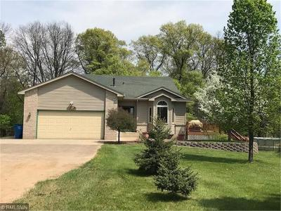 Isanti Single Family Home For Sale: 25145 Larch Street NW
