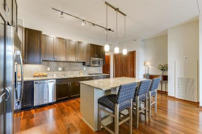 Minneapolis Condo/Townhouse For Sale: 1120 S 2nd Street #612