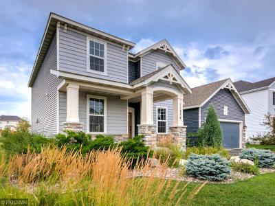Chisago County, Washington County Single Family Home For Sale: 11374 Wagon Wheel Curve