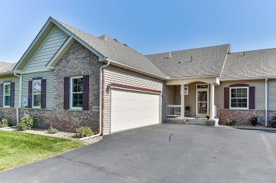 North Branch Condo/Townhouse For Sale: 4968 384th Trail