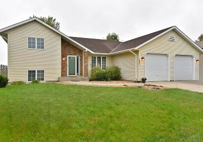 Faribault Single Family Home For Sale: 1221 19th Street SW