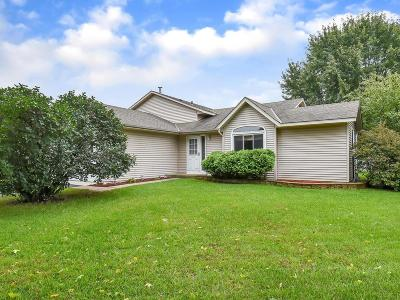 Rosemount Single Family Home For Sale: 15458 Darling Path