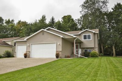 Single Family Home For Sale: 247 17th Avenue SE