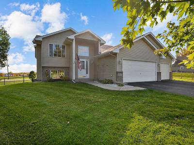 Rogers Single Family Home Contingent: 21555 Ash Court