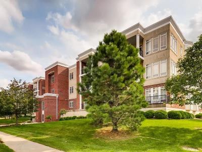 Apple Valley Condo/Townhouse For Sale: 14587 Florissant Path #226