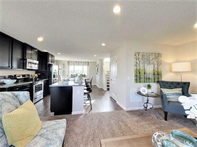 Lino Lakes Condo/Townhouse Contingent: 654 Town Center Parkway