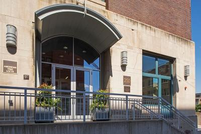 Minneapolis Condo/Townhouse For Sale: 250 Park Avenue #413