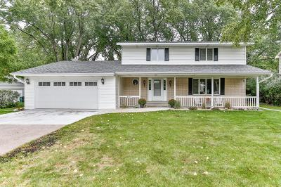 Shoreview Single Family Home For Sale: 807 Gramsie Road
