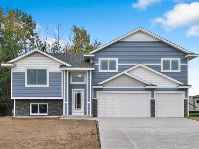 Single Family Home For Sale: 617 Horseshoe Lane