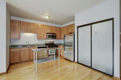 Minneapolis Condo/Townhouse For Sale: 15 E Franklin Avenue #217