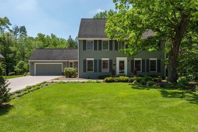 Edina MN Single Family Home For Sale: $749,000