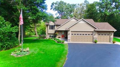 North Branch Single Family Home For Sale: 7630 393rd Court