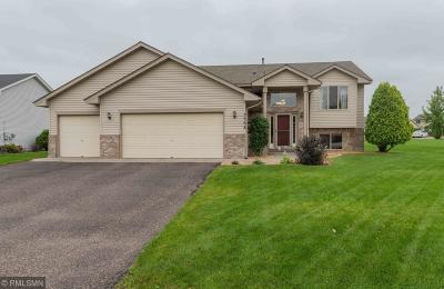 Saint Michael Single Family Home For Sale: 3558 Kahler Drive NE
