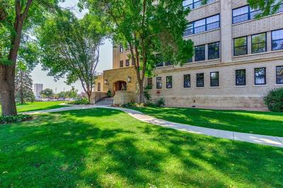 Hennepin County Condo/Townhouse For Sale: 730 Stinson Boulevard #321