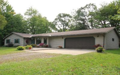 Hinckley Single Family Home For Sale: 110 Birchview Lane