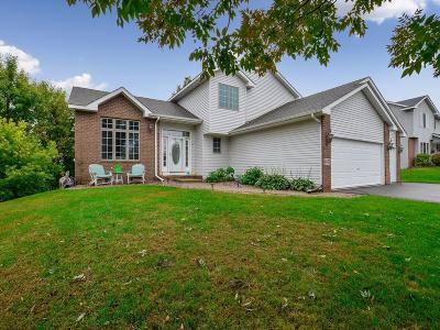Saint Michael Single Family Home For Sale: 4473 Mason Avenue NE
