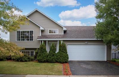 Farmington Single Family Home For Sale: 1113 Spruce Street