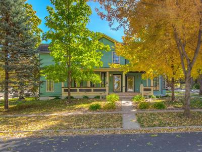 Hastings Single Family Home For Sale: 202 7th Street E