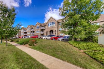 Orono Condo/Townhouse For Sale: 2670 Kelley Parkway #217