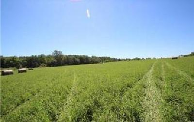 Amery Residential Lots & Land For Sale: Xxx 90th Avenue