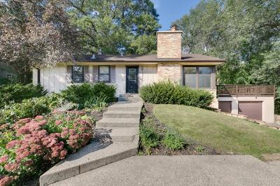 Single Family Home For Sale: 12412 Chippewa Lane