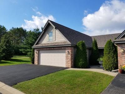 Hudson Single Family Home For Sale: 1913 Stone Creek