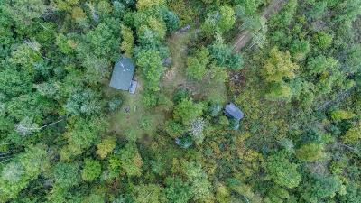Single Family Home For Sale: 11417 White Pine Road