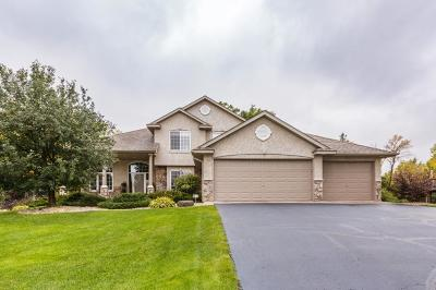 Forest Lake Single Family Home For Sale: 6631 210th Lane N