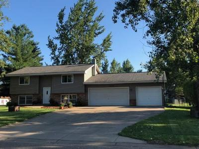 Ham Lake Single Family Home For Sale: 2530 152nd Lane NE