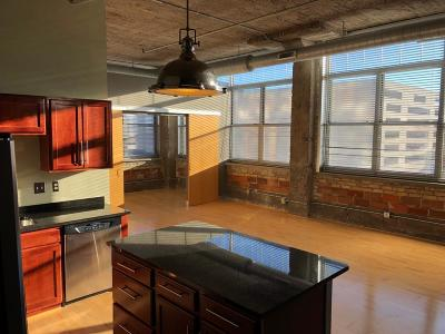 Condo/Townhouse For Sale: 521 S 7th Street #516