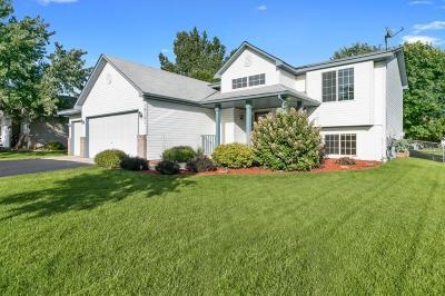 Elk River Single Family Home For Sale: 18161 Hudson Lane NW