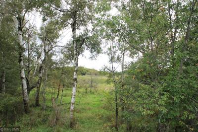 Isanti Residential Lots & Land For Sale: Xxx 245th Ave NW