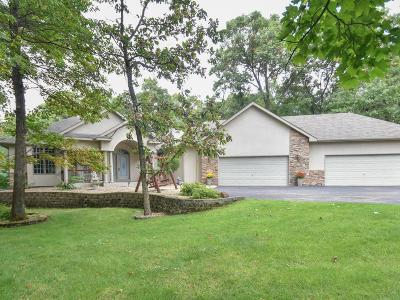 Elk River Single Family Home For Sale: 22412 Tipton Street NW