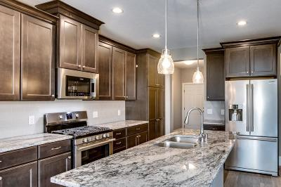 Rosemount Condo/Townhouse For Sale: 13704 Brookview Path