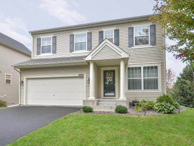 Blaine Single Family Home For Sale: 12126 Waconia Circle NE