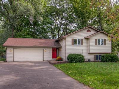 Hudson Single Family Home For Sale: 222 10th Street S