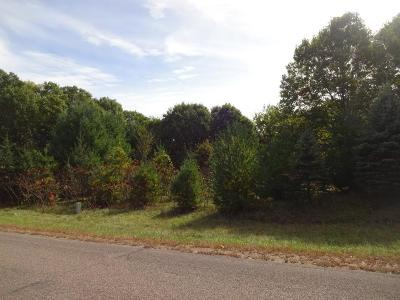 Hager City Residential Lots & Land For Sale: Lot 1 845th