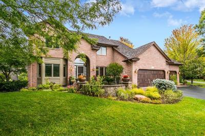 Wayzata, Plymouth Single Family Home For Sale: 4490 Fountain Lane N
