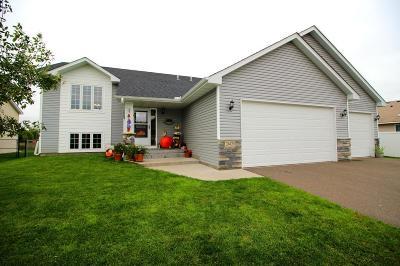 East Bethel Single Family Home For Sale: 24123 Pierce Street NE
