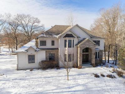 Ham Lake Single Family Home For Sale: 13446 Edison Street NE