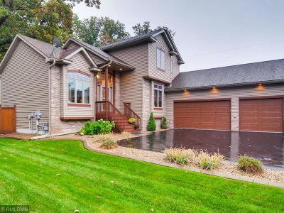 Blaine Single Family Home For Sale: 10913 Dunkirk Street NE