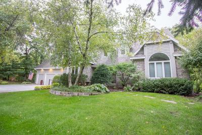 Apple Valley Single Family Home For Sale: 13873 Guild Avenue