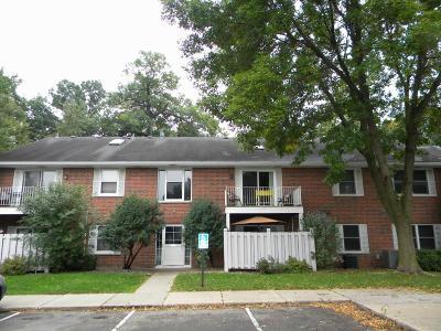 Woodbury Condo/Townhouse Contingent: 6347 Alderwood Circle