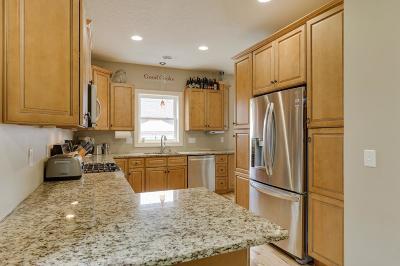 Saint Paul Single Family Home For Sale: 1229 James Avenue