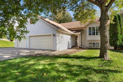 Rosemount Single Family Home For Sale: 14100 Dane Avenue