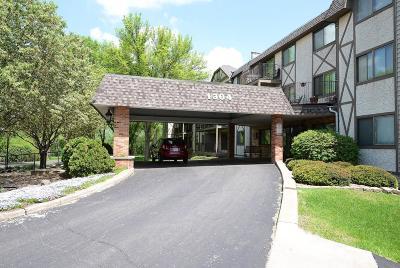 Wayzata, Plymouth Condo/Townhouse For Sale: 1304 W Medicine Lake Drive #120