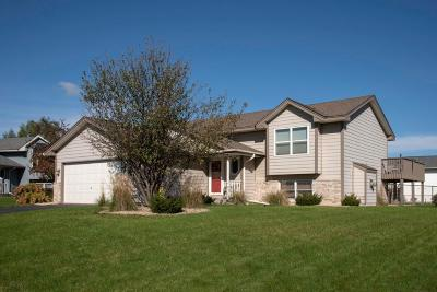 Savage Single Family Home For Sale: 5716 Oak View Court