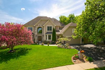 Eden Prairie Single Family Home For Sale: 9425 Shetland Road