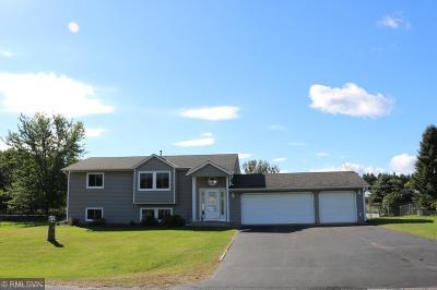 Cambridge Single Family Home For Sale: 4215 E Rum River Circle S